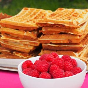 animation gaufres minute à déguster avec sucre glace, beurre, confiture, Nutella, chantilly, fruits frais, éclats de pistache.