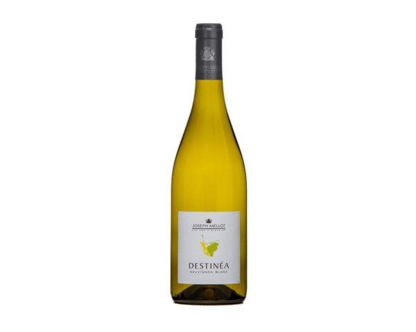 Vin blanc de Loire Domaine Mellot - Sauvignon