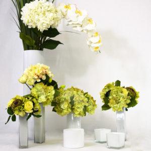 Pack décoration blanc et vert