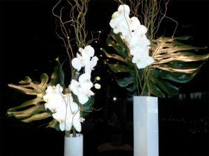 fleurs fraîches blanches